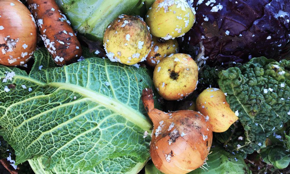 Feit of fabel: wintergroenten zijn minder gezond dan zomergroenten