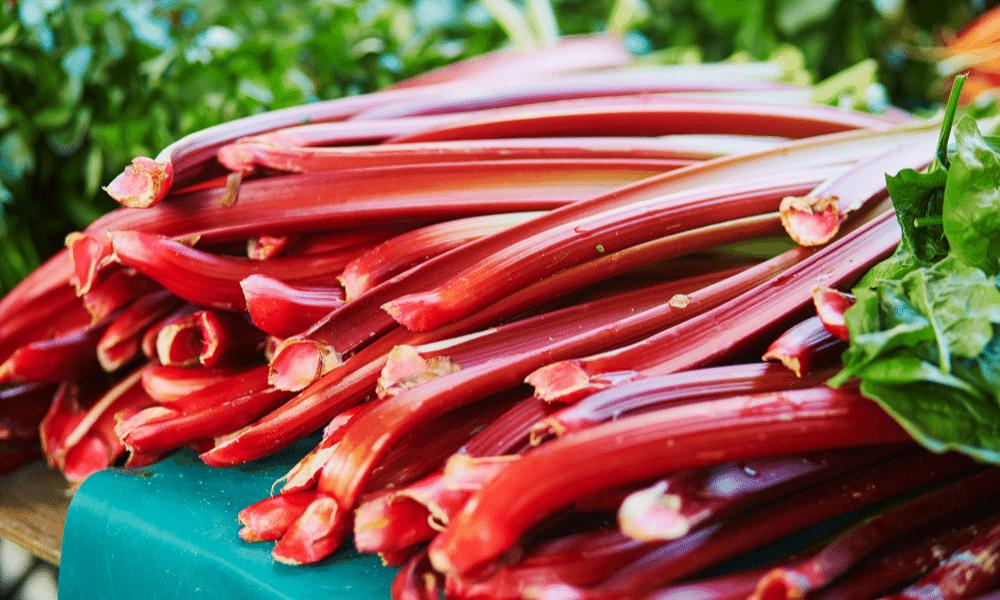 Wat jij nog niet wist over rabarber: 5 weetjes