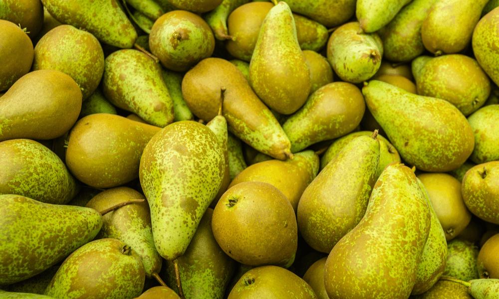 Wat jij nog niet wist over peren: 5 weetjes