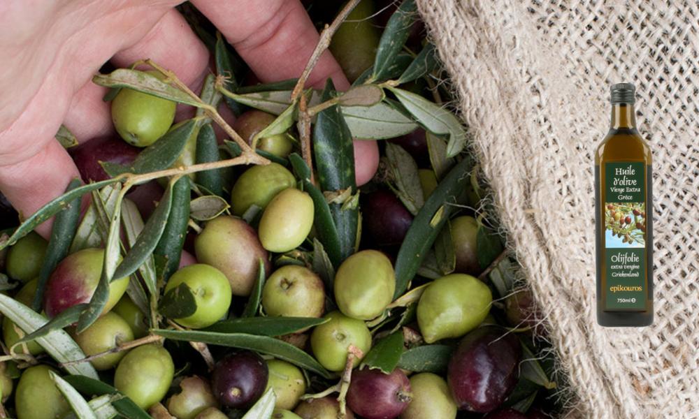 Epikouros: de beste extra vierge olijfolie ter wereld