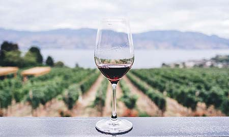 In de kijker: heerlijke rode wijn in bulk uit Sicilië