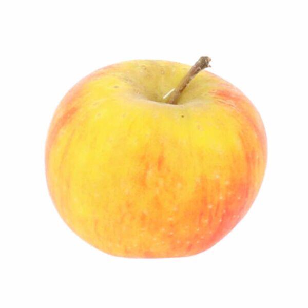 Franse Reinette appel