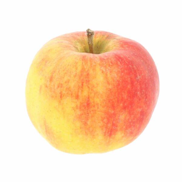 Initial appel