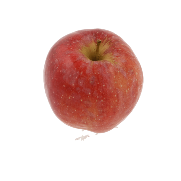 Florina appel