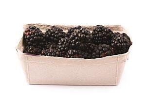 Braambessen in bakje (0,125 kg)