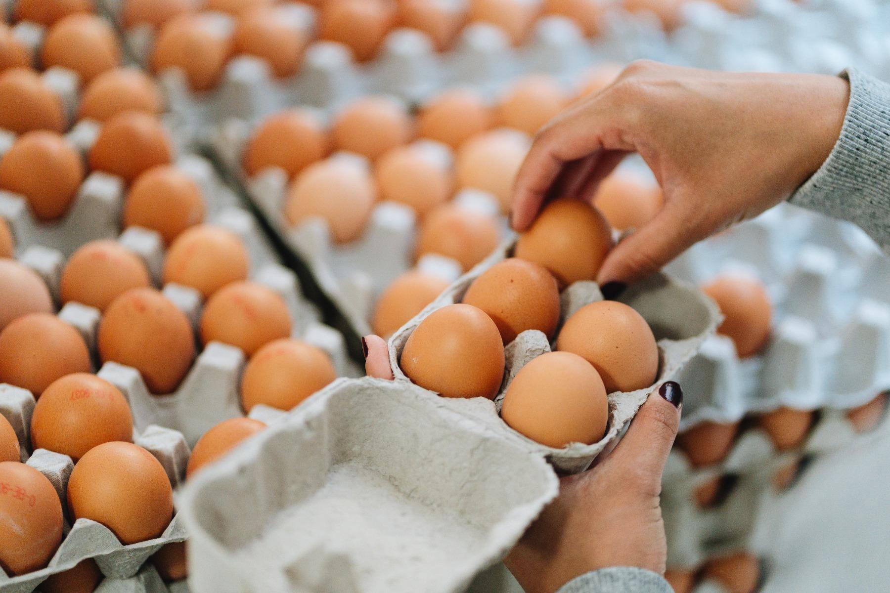 Biologische producten De Bio Markt