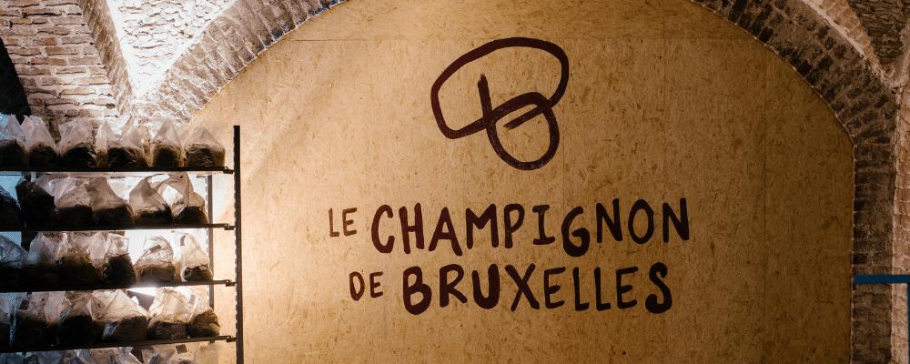 le-champignon-de-bruxelles-biologische-paddenstoelen-biomarkt-beo-versmarkt-blog